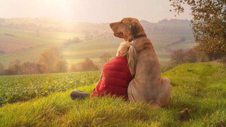 犬を飼って初めてわかる『人生における大切なこと』4選