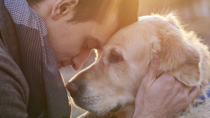 もっと話がしたい。犬が本当に伝えたがっている事とは?