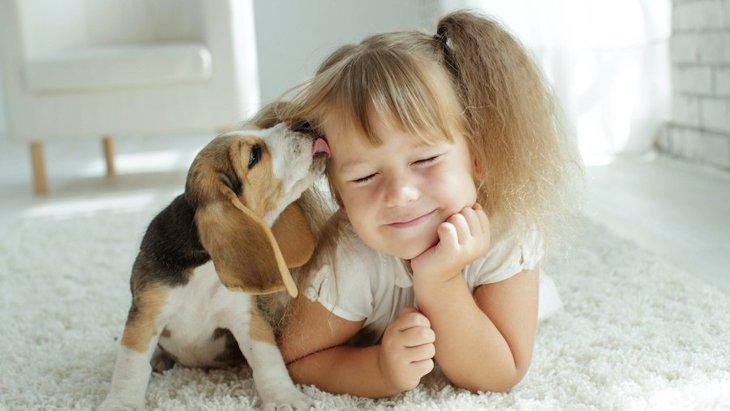 犬と人間の子どもに共通する10個のこと