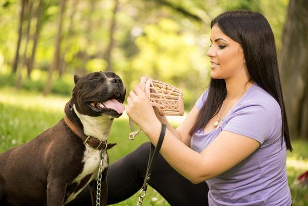 犬の口輪について 種類と付け方や注意点