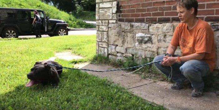 倒壊寸前の家から犬の家族を救出!攻撃的な母犬に手こずった保護活動
