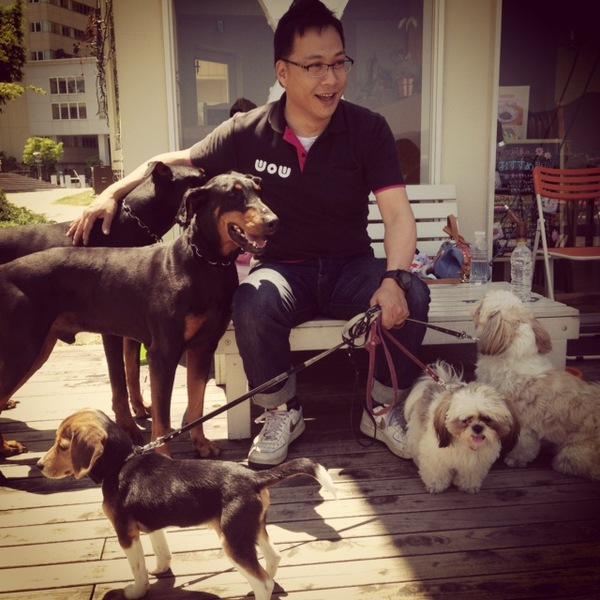 先住犬とトラブル!多頭飼いで後輩犬と仲良くさせる方法