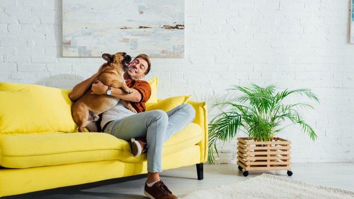 犬が『心を許す人』に共通している5つのこと