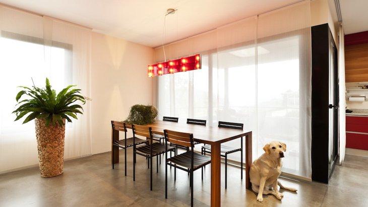 愛犬が留守番中に震災が起きた時のための対策