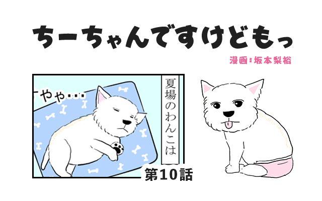 ちーちゃんですけどもっ【第10話】「夏は暑いから離れたい犬」