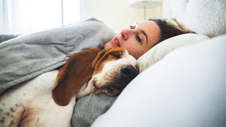 超カワイイ♡犬が飼い主を心配している時の行動5選