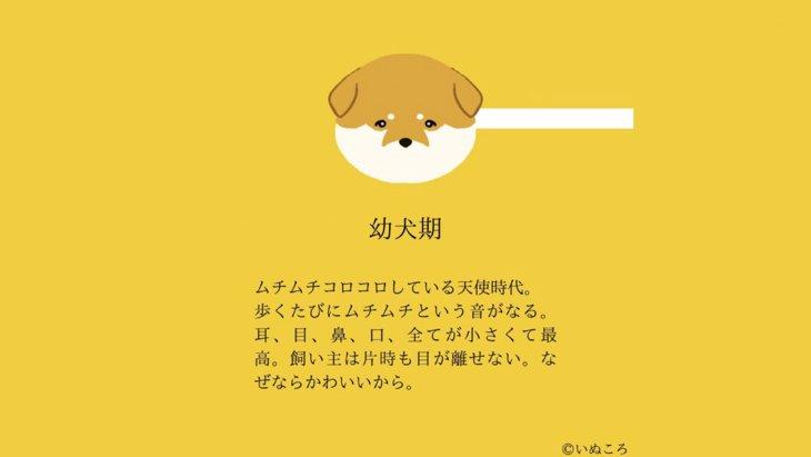 世代別『犬のかわいいところ』をまとめたイラストに共感の声続出!