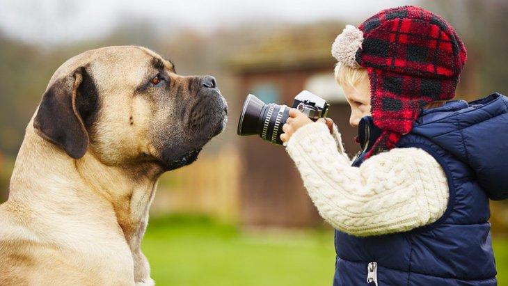 犬がカメラを嫌う理由と克服する方法