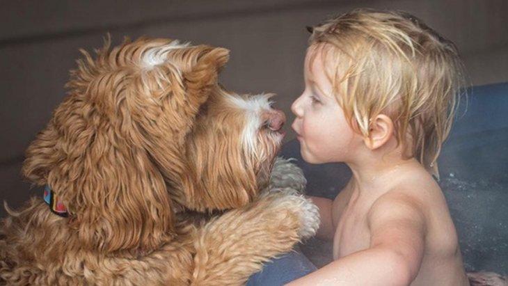 見たらきっと幸せになれる!里親の深い愛情に包まれた少年とワンコの日常