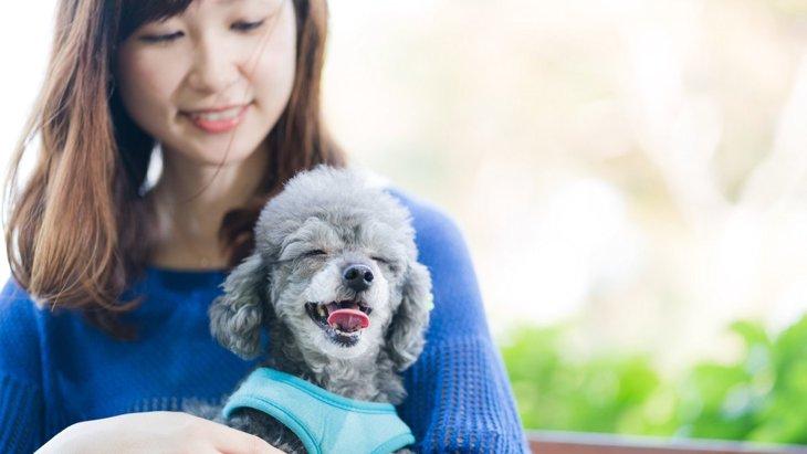 なぜ犬は『人を好き嫌い』するの?3つの理由と仲良くなるコツを解説