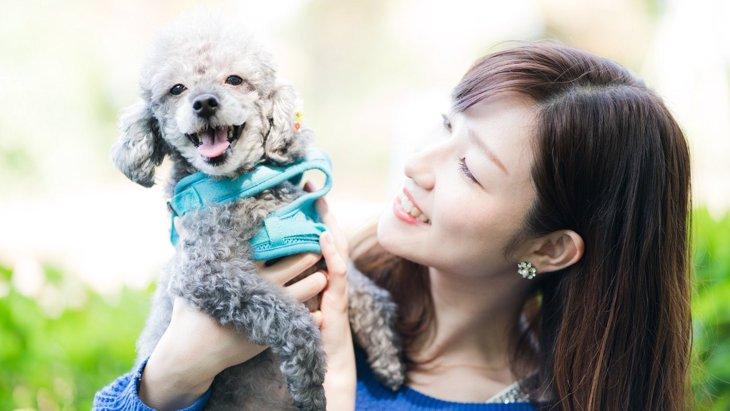 犬にとっての『良い飼い主』の共通点とは?5つの特徴を解説