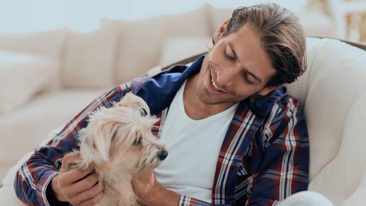 なぜ犬は撫でられると喜ぶの?4つの理由