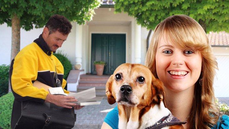 犬と関わりあう職業の人の咬傷事故防止のための研究