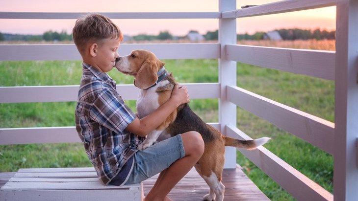 犬が『気を遣っている時』にしている仕草や行動4選