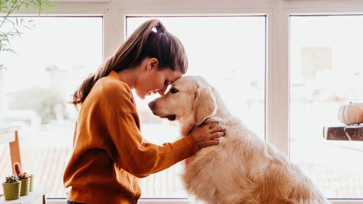 犬が『仲間だと思っている人』にする仕草や態度5選