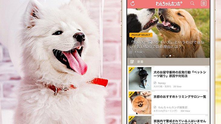 【わんちゃんホンポ公式アプリ】犬と飼い主のココロを繋げる情報を毎日お届け!