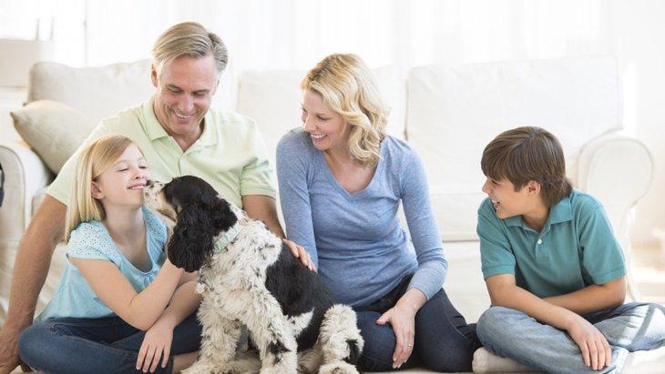 「犬を飼っている人」と「飼っていない人」の生活の違い