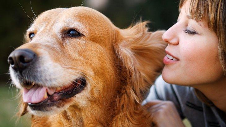 たくさん話かけると犬の寿命が延びる?期待できる効果について