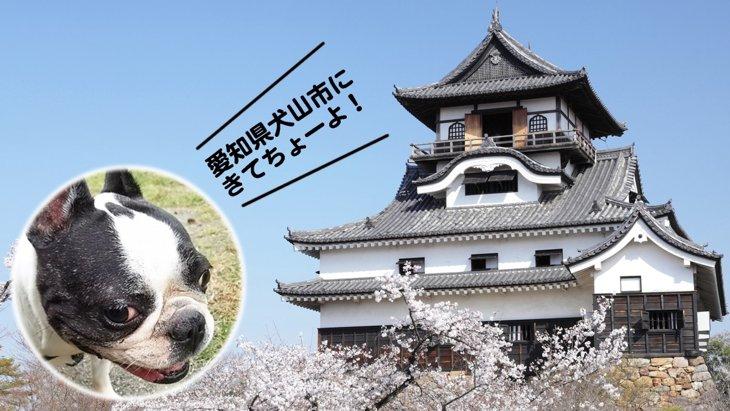 人も犬も笑顔になる街! 愛知県犬山市へ観光しにきてちょーよ!!