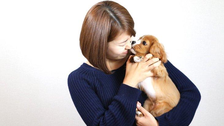 犬にNGな『抱っこ』の仕方3選!愛犬のために正しい抱き方を!