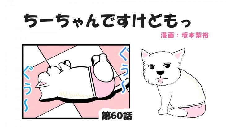 ちーちゃんですけどもっ【第60話】「愛犬の見え方」