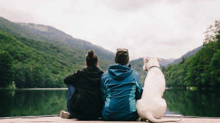 犬の飼い主が経験しがちな『困りごと』4選