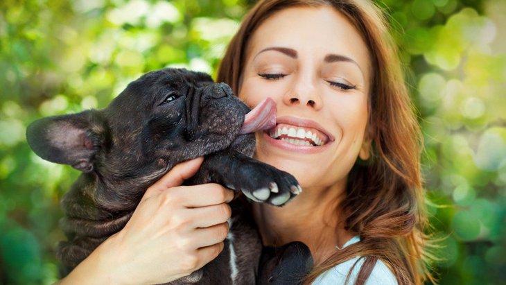 犬はメイクをした飼い主の顔を舐めても大丈夫?