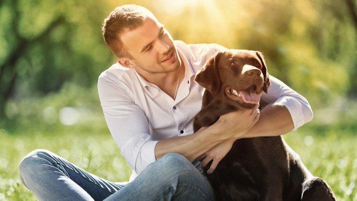 人気犬種ランキング!大きさ別(小型犬~大型犬)の特徴や性格