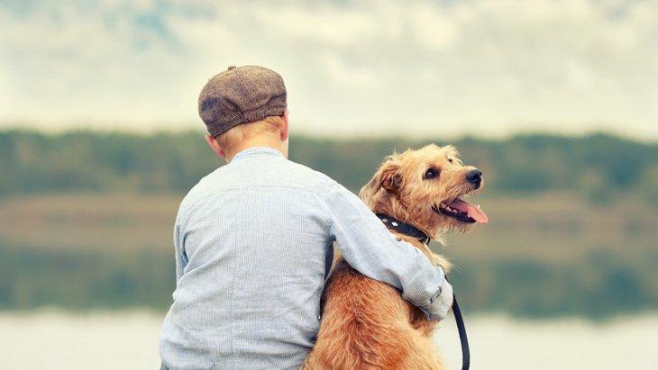 犬の供養の仕方3選