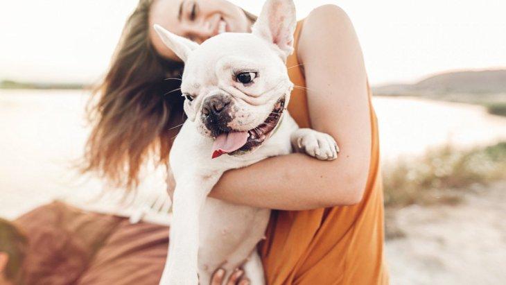 間違ってない?犬の抱っこをする『正しい方法』4つ