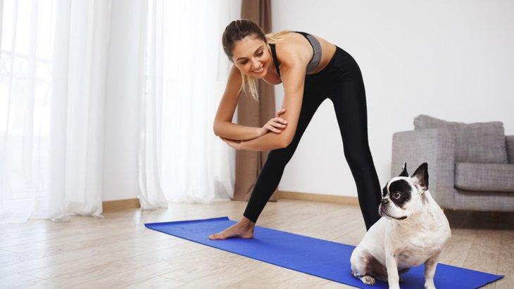 愛犬と一緒に通える習い事4選
