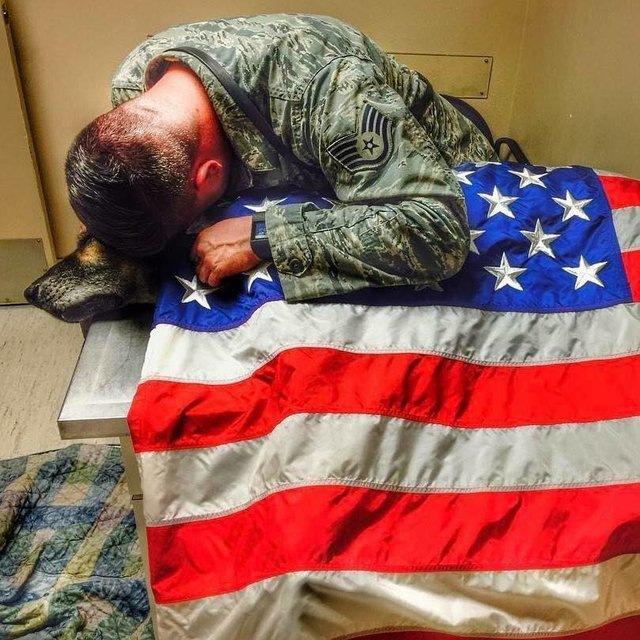 戦友との最後の別れ…愛犬の為に「安楽死」を選択した男性