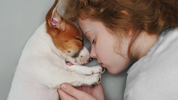 我が家の犬は?犬が『寝ている場所』でわかる6つの心理