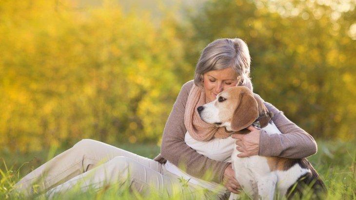 9歳の犬を人間の年齢に例えると?一緒に暮らすポイント、おすすめ商品まで