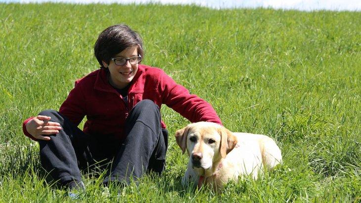 犬は障害を持つ人と社会の橋渡し役になれるだろうか【研究結果】