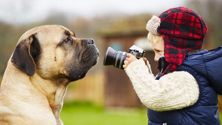 最悪の場合失明の危険も!ペットの撮影にはフラッシュは厳禁!