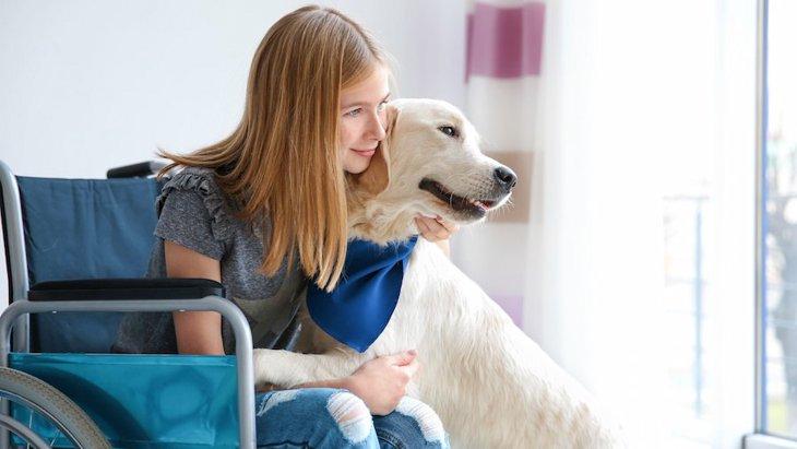 介助犬がもたらす心理的社会的な恩恵を科学的に示したリサーチ結果