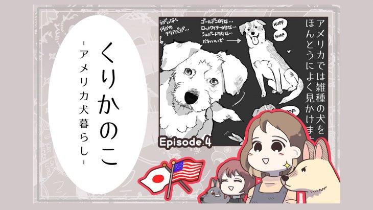 くりかのこ アメリカ犬暮らし【第4話】「ミックスの国」