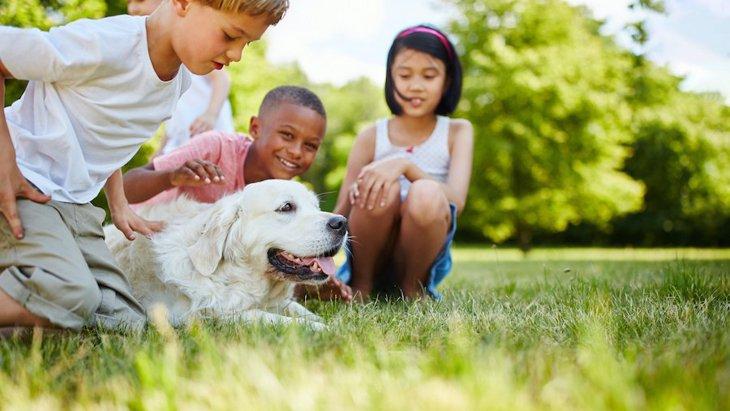 愛犬家が気をつけたい『近所付き合い』での4つの気配りとトラブルへの注意事項