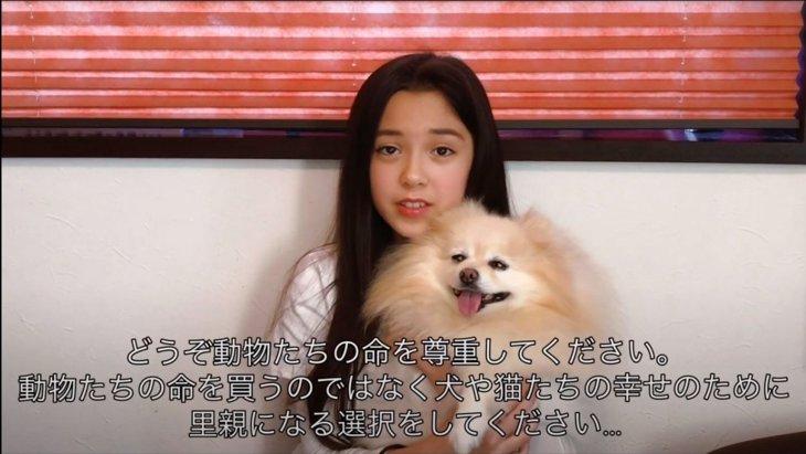 10歳の少女による朗読絵本『ペットショップで命を買わないで』