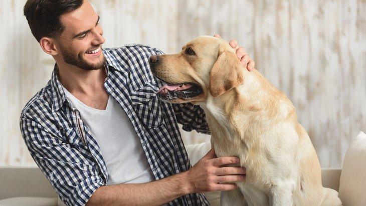 犬が飼い主に頭を押し付けてくる3つの心理