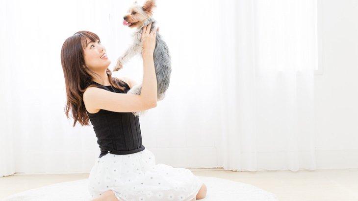 犬を抱っこする時のNG行為5選