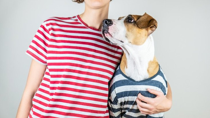 『犬と飼い主は似る』って本当なの?