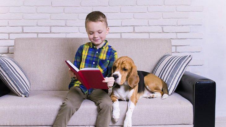 犬と一緒にいることが子供の読書へのやる気を起こさせるという研究結果