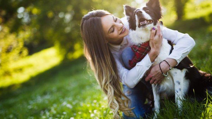 犬を大事に育てている人がしている5つのこと