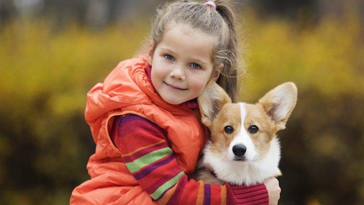 犬と子供が良い関係であるために必要なこと5つ