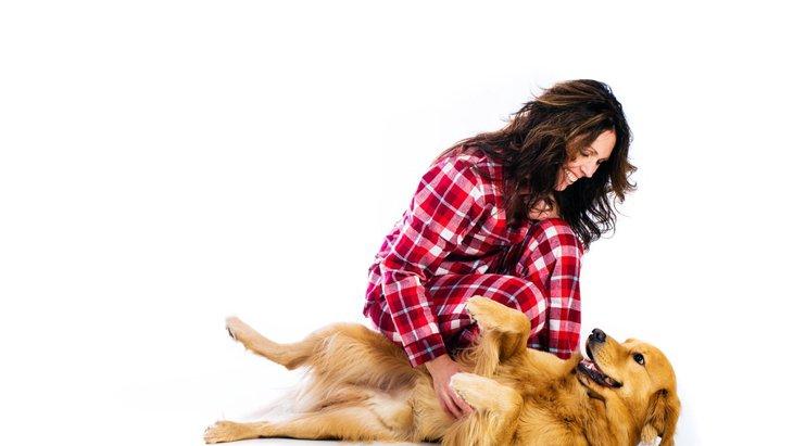 犬が飼い主に体をこすりつけるときの心理