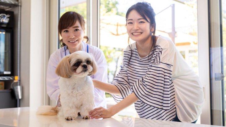 犬が異物を食べてしまう行動についての研究がスタート