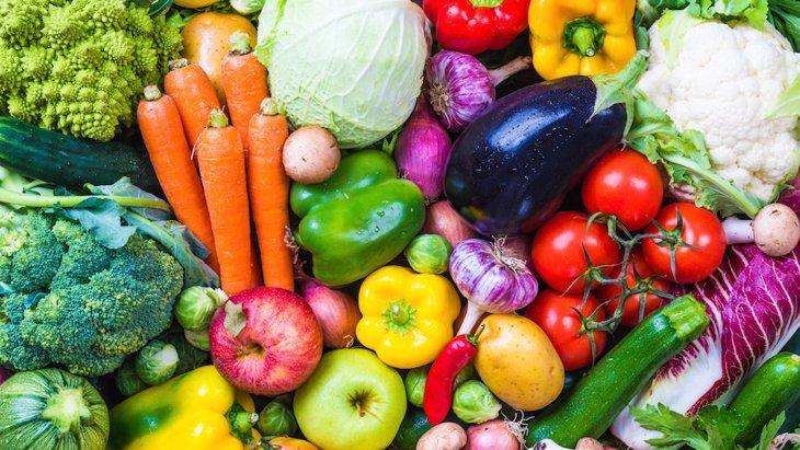 犬に野菜は必要?栄養や効果、おすすめ食材や手作りご飯のレシピまで