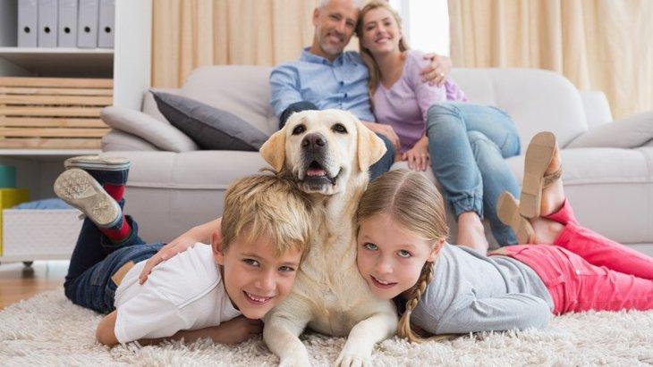 愛犬のことを好きすぎる飼い主あるある6選